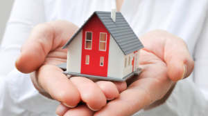 Buy natural house from online brokers